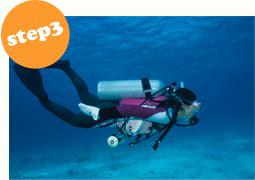 step3海洋実習